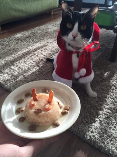 いいの?食べていいの?